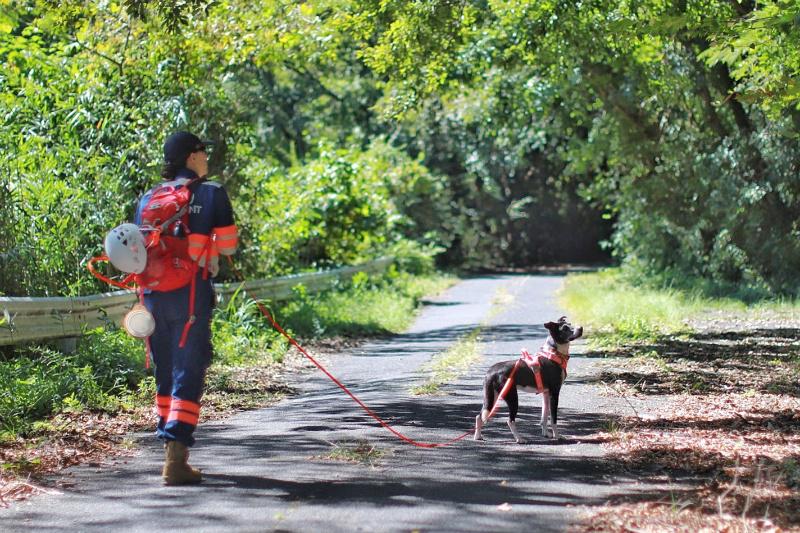 広島県神石高原町で行方不明者の捜索活動を実施