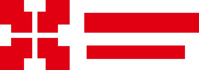 災害支援・医療支援プロジェクト「ARROWS」|被災地に医療チームを